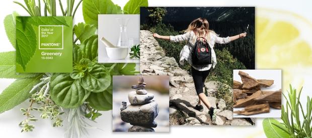 fragranceBlog_inset2